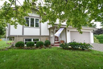 Mukwonago Single Family Home Active Contingent With Offer: 101 Mercury Ct