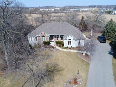 Hartland Single Family Home Active Contingent With Offer: 732 River Reserve Dr