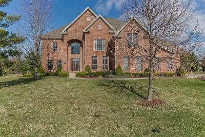 Kenosha County Single Family Home For Sale: 4257 94th Pl