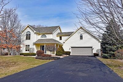 Kenosha County Single Family Home For Sale: 106 W Dells Rd