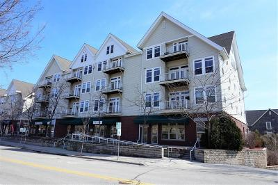 Ozaukee County Condo/Townhouse For Sale: 110 S Wisconsin St #2E