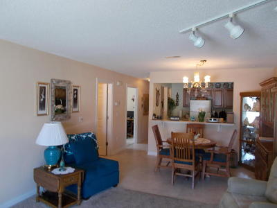 Pewaukee Condo/Townhouse Active Contingent With Offer: 550 Pewaukee Rd #D