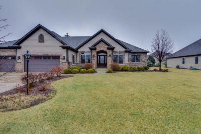 Pleasant Prairie Single Family Home Active Contingent With Offer: 10075 51st Ct