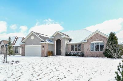 Kenosha County Single Family Home For Sale