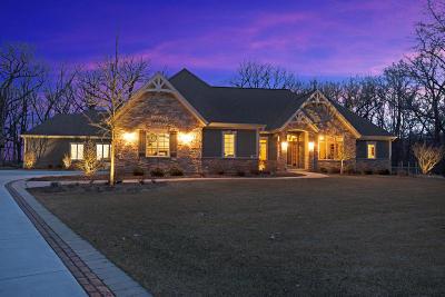 Kenosha County Single Family Home For Sale: 7008 265th Ave