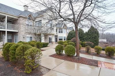 Milwaukee County Condo/Townhouse Active Contingent With Offer: 7045 S Riverwood Blvd #105