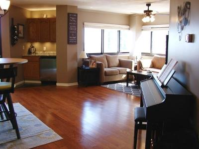 Milwaukee County Condo/Townhouse Active Contingent With Offer: 1633 N Prospect Ave #9E