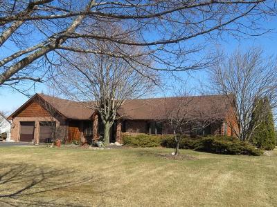 Kenosha County Single Family Home For Sale: 23410 112th St