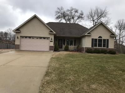 Kenosha County Single Family Home For Sale: 353 Edgewood Dr