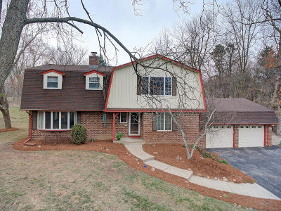 Hartland Single Family Home Active Contingent With Offer: N64w30950 Cindy Ct