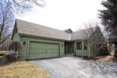 Greendale Condo/Townhouse Active Contingent With Offer: 5477 Wild Cherry Cir