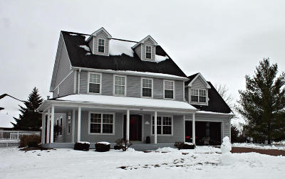 Racine County Single Family Home For Sale: 317 Haynes Ct