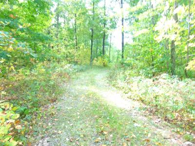Wausaukee Residential Lots & Land For Sale: Lt48 Wellsprings Ct