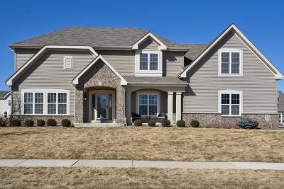 Menomonee Falls Single Family Home For Sale: W192n5845 Spencers Pass