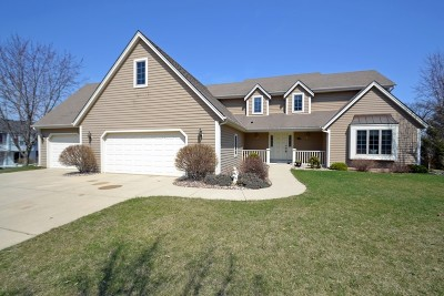 Racine County Single Family Home For Sale: 716 Briody St
