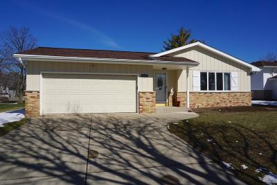Milwaukee County Single Family Home For Sale: 9704 S Veronica Dr
