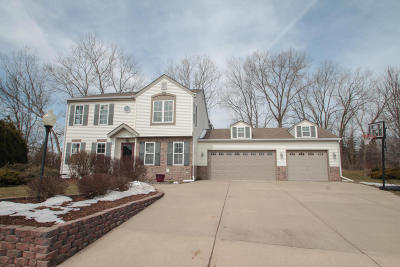 Mukwonago Single Family Home Active Contingent With Offer: 1101 Mallard Ct