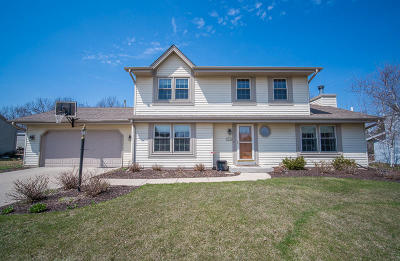 Franklin Single Family Home Active Contingent With Offer: 8229 S 47th St
