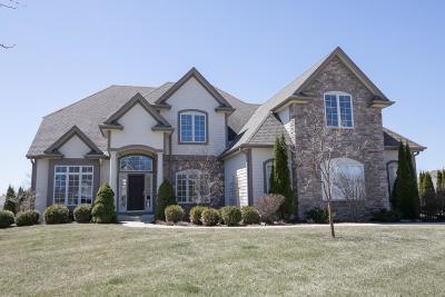 Cedarburg Single Family Home For Sale: N65 W4855 Cedar Reserve Cir