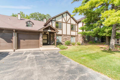 Williams Bay Condo/Townhouse Active Contingent With Offer: 25 Driftwood Ct #C