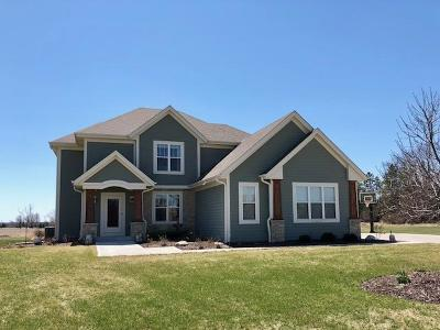 Hartland Single Family Home Active Contingent With Offer: W279n8428 Copper Ct