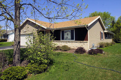 Franklin Single Family Home Active Contingent With Offer: 4220 W Minnesota Ct