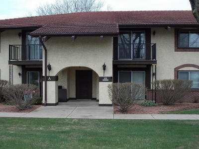 Menomonee Falls Condo/Townhouse Active Contingent With Offer: N82w13502 Fond Du Lac Ave