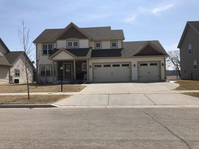 Port Washington Single Family Home For Sale: 1727 Galena Dr