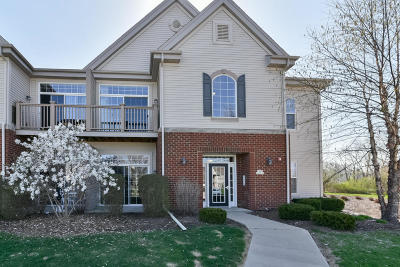 Condo/Townhouse Active Contingent With Offer: W206n16733 Blackberry Cir #1507