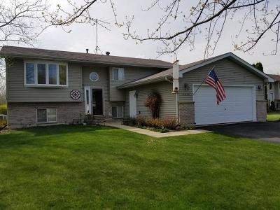 Pleasant Prairie WI Single Family Home Active Contingent With Offer: $249,000