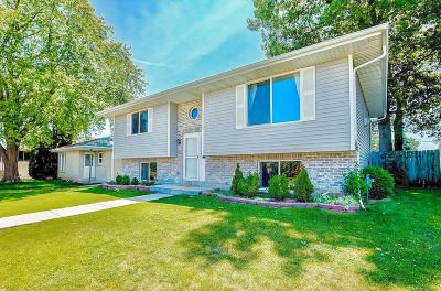 South Milwaukee Single Family Home For Sale: 725 Drexel Blvd