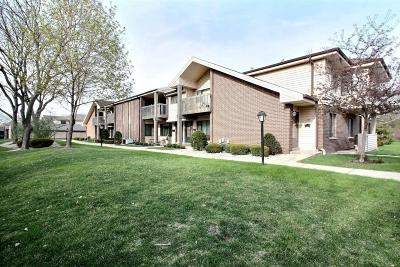 New Berlin Condo/Townhouse Active Contingent With Offer: 1653 S Carriage Ln #6