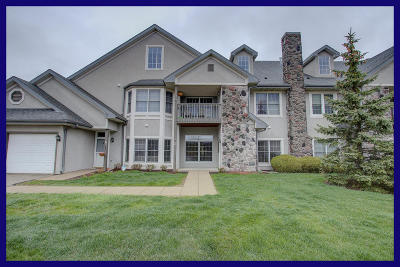 Pewaukee Condo/Townhouse Active Contingent With Offer: N30w23035 Pine View Cir #2