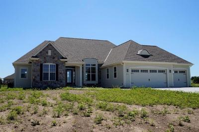 Pewaukee Single Family Home For Sale: W239n3774 River Birch Ct