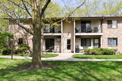 New Berlin Condo/Townhouse Active Contingent With Offer: 1715 S Coachlight Dr #C
