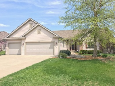 Franklin Single Family Home For Sale: 6752 W River Pointe Dr
