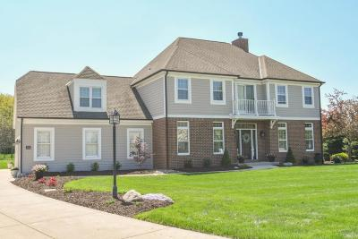 Hartland Single Family Home Active Contingent With Offer: W287n6354 Broadwing Ct