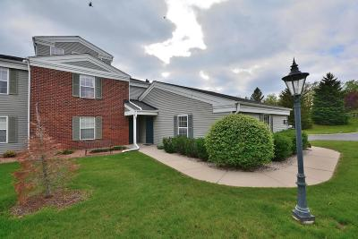 Pewaukee Condo/Townhouse Active Contingent With Offer: N17w26887 E Fieldhack #DR F