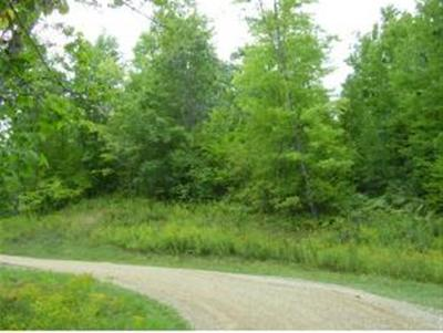 Menominee County, Marinette County Residential Lots & Land For Sale: Lt40 Deepwoods Trl