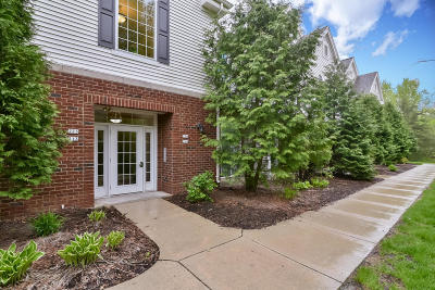 West Bend Condo/Townhouse Active Contingent With Offer: 2060 Rainbow Lake Ln #223