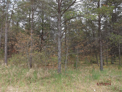 Menominee County, Marinette County Residential Lots & Land For Sale: Lt 1 Tappendorf Trl