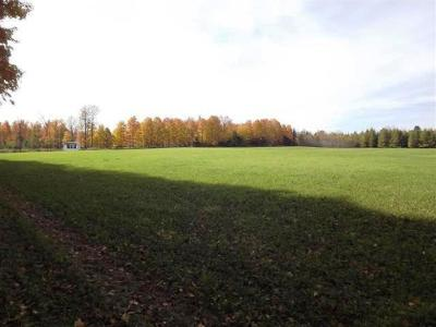 Wallace MI Residential Lots & Land For Sale: $129,900