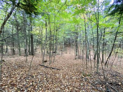 Menominee County, Marinette County Residential Lots & Land For Sale: N12198 Wolfe Ln