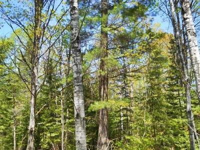 Menominee County, Marinette County Residential Lots & Land For Sale: 1.48 Acres Holmes Junction Plat W