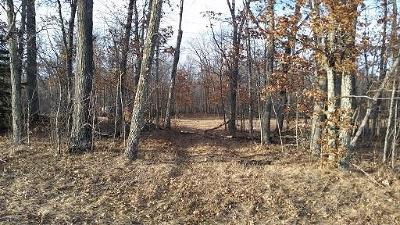 Residential Lots & Land For Sale: W11532 High Falls Rd