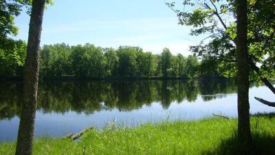 Wausaukee Residential Lots & Land For Sale: Lt 81 Bracken Trl