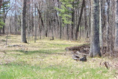 Menominee County, Marinette County Residential Lots & Land For Sale: Lt 24 Sandstone Ln