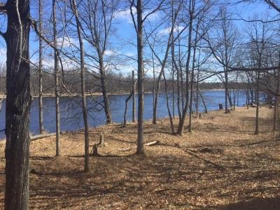 Wausaukee Residential Lots & Land For Sale: Lot 42 Crystal Rapids Rd