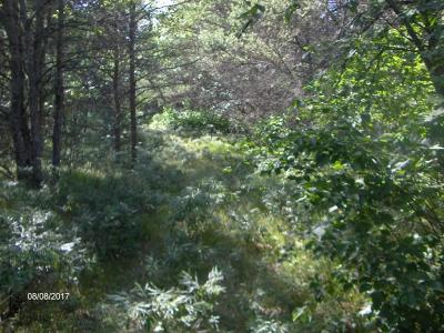 Menominee County, Marinette County Residential Lots & Land For Sale: Lt. 43 Penny Ln