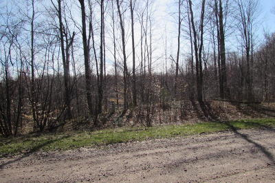 Menominee County, Marinette County Residential Lots & Land For Sale: Lt14 Fisherman Ln